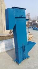 ne斗式提升机厂家直销矿粉垂直加料机图片
