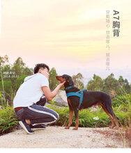 亚马逊爆款狗狗宠物胸背带反光防爆冲凯利宠物用品宠物牵引绳背带图片