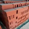 厂家供应广场景观砖庭院砖烧结砖园林绿化陶土烧结砖量大优惠欢迎咨询