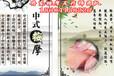丹東韓式精油推體按摩,由韓國家庭式按摩改良而成的按摩方法