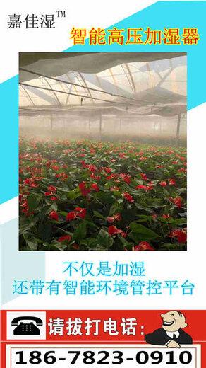 香菇溫室加濕器制造,嘉佳濕加濕噴霧系統
