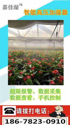 花卉種植加濕器設備,嘉佳濕高壓噴霧