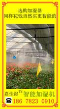 菇房大棚加濕機,嘉佳濕加濕機批發圖片