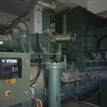廠家直銷二手制冷機冷飲廠制冷機組圖片