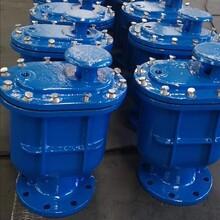 自動排氣閥復合式排氣閥球鐵空氣閥圖片