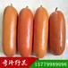 香如蜜红香蜜种子奇珍野果农业开发有限公司直销