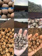 遵义页岩陶粒什么价格-遵义建筑陶粒-遵义陶粒混凝土批发图片