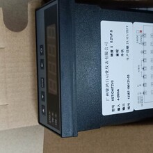 XST顯示控制儀液位顯示儀表溫度顯示控制儀壓力顯示控制儀圖片