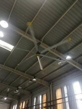 德陽大型工業風扇批發圖片