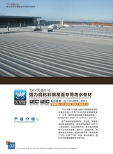 彩钢屋面专用防水卷材天信防水材料有限公司图片