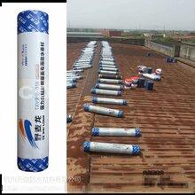 彩钢瓦漏水钢结构防水厂房漏雨专业维修图片