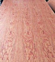 天然山纹花梨木饰面板图片