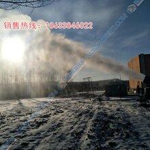 国内认证淮安万丰自动摆头造雪机总代理