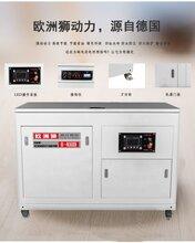 50kw汽油发电机50kw汽油发电机多少钱一台品牌欧洲狮图片