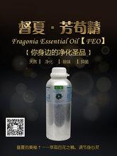芳茍精油漆公司銷售處除味凈化除異味漆味除味劑feo圖片