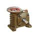WPWDZ50蝸輪蝸桿減速機工作原理