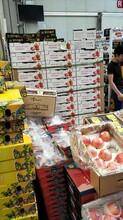 上海進出水果批發市場/上海水果批發零售廠家圖片