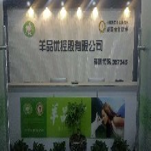 中国冠军品质羊奶粉系列开发图片