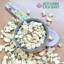 碎片白蓮子米碎特級湖南湘蓮食品出口寸三蓮尚品蓮皇產地批發供應圖片