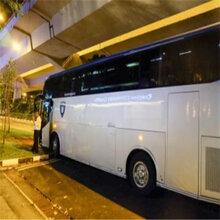 如皋到修文豪华大巴车欢迎乘坐图片