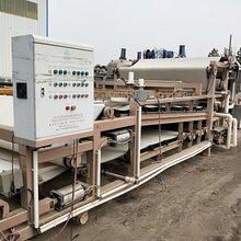 回收二手帶式壓濾機洗沙污水處理壓泥機壓濾機圖片