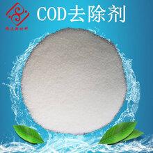 厂家直销高效cod去除剂cod降解去除剂微生物污水专用处理剂