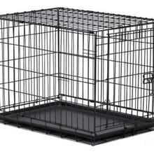 美國政府采購急需-狗籠圖片