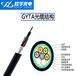厂家24芯单模铠装光缆室外穿管光缆国标光纤GYTA-24B1