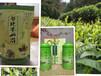 廣州綠茶泡茶讓茶葉更加清香可口