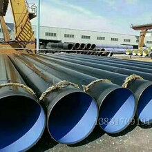 乐业县涂塑钢管厂家图片