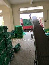 江苏15米14斤地笼网厂家批发图片