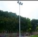 玉林球场灯光设施7.6米灯杆价格