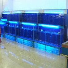 广州海鲜鱼池生产批发,广州定海鲜鱼池多少钱一米图片