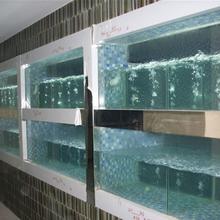 广州专业海鲜鱼池定做,广州海鲜鱼池安装图片
