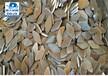 山東法蘭盤毛坯報價,山東聊城迪大機械配件有限公司聊城法蘭盤業生產法蘭毛坯33010