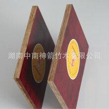 竹胶板价格板面光滑竹胶板耐水性好好房用好板就选中南神箭图片