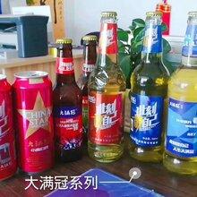 青岛大满冠啤酒招商图片