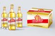青岛大满冠啤酒升级