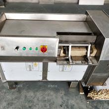 全自动菠菜500型冻肉切丁机视频全自动熟肉500型冻肉切丁机视频图片