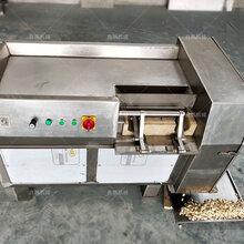 不銹鋼核桃仁500型凍肉切丁機圖片圖片