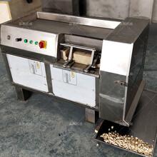 大型红枣800型冻肉切丁机使用方法图片