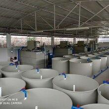 贵州循环水养殖项目工厂化水循环养殖高密度养鱼养虾