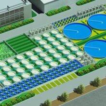 工厂化循环水养殖系统工作原理-循环水处理设备-循环水养殖