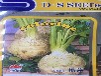 根芹菜种子特色四季栽培蔬菜种子特菜根芹种子吃根部2克
