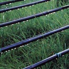广西滴灌管、柳州滴灌管件、广西PE滴灌管、广西滴灌管接头、滴灌旁通