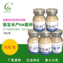 水产微生物制剂价格,水产专用菌,百益宝渔宝图片