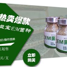 郑州百益宝EM菌在农业养殖种植中的应用图片