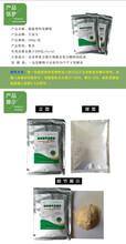 发酵床养猪价格,发酵床养猪介绍,发酵床养猪菌种厂家图片