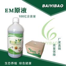 用百益宝EM原液发酵米糠或油糠的发酵技术图片