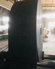 耐高温斗提机皮带生产厂商定制图片